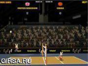 Флеш игра онлайн 2012 BunnyLimpics Volleyball
