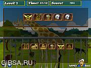 Флеш игра онлайн Brain Power - Zoo
