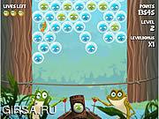 Флеш игра онлайн Bubble Frog