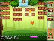Флеш игра онлайн Освобождение животных