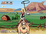 Флеш игра онлайн Cheyenne Rodeo