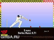 Флеш игра онлайн Крикет