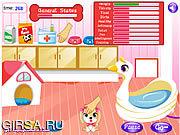 Флеш игра онлайн Cute Puppy Daycare