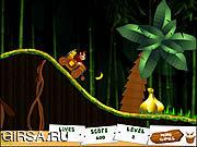 Игра Donkey Kong Jungle Ride