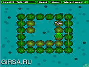Флеш игра онлайн Frogfly