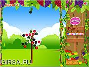 Флеш игра онлайн Fruit Shoot Garden