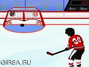 Флеш игра онлайн Хоккей Все Звезды Конкурса