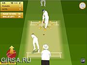 Флеш игра онлайн Крикет 2012