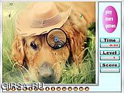 Флеш игра онлайн Меланхолический собак скрытые номера / Melancholic dogs hidden numbers