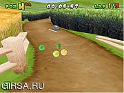 Флеш игра онлайн Мяч / Melon Dash