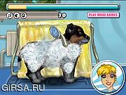 Флеш игра онлайн Мой милый щенок