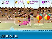 Флеш игра онлайн Шоу дельфинов