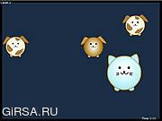 Флеш игра онлайн P - Cat