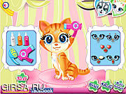 Флеш игра онлайн Pets Beauty Salon