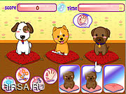 Флеш игра онлайн Салон домашних животных