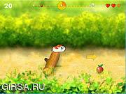 Флеш игра онлайн Идущий хомяк / Running Hamster