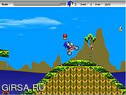 Флеш игра онлайн Соник ежи Moto / Sonic The Hedgehogs Moto