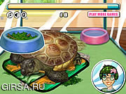 Флеш игра онлайн Turtle Care