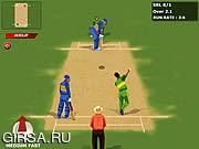 Флеш игра онлайн Мировой крикет