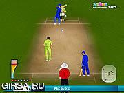 Флеш игра онлайн Сверчок 2011 мира