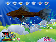 Флеш игра онлайн Aquarium Fish Decor