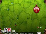 Флеш игра онлайн Жуков / Beetles