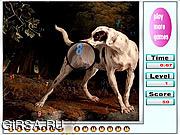 Флеш игра онлайн Большой Сад Собачках Скрытые Номера