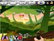 Флеш игра онлайн Охотник на птиц 1 / Birds Hunter1