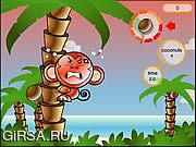 Флеш игра онлайн Остров Кокон / Cocoon Island