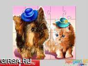 Флеш игра онлайн Милые домашние животные / Cute Pets Jigsaw Puzzle