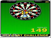 Флеш игра онлайн 501 Вызов Дарт