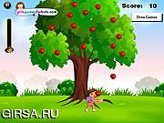 Флеш игра онлайн Даша - ловец яблок / Dora Apples Catching