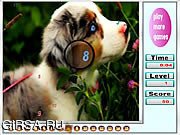 Флеш игра онлайн Животные - найти числа
