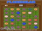 Флеш игра онлайн Стратегическая головоломка / Floribular
