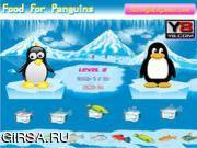 Флеш игра онлайн Питание для пингвинов / Food For Penguins