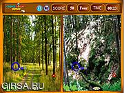 Флеш игра онлайн Лес - найти отличия / Forest Similarities