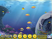 Флеш игра онлайн Выращивание Рыбы