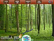 Флеш игра онлайн В поисках мишени в лесу / Hidden Targets Forest