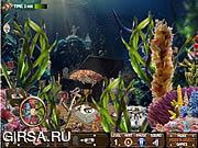 Флеш игра онлайн Hidden Treasures Of The Sea