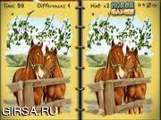 Флеш игра онлайн Найди отличия  - Лошади