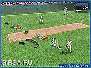 Флеш игра онлайн Просто Не Крикет