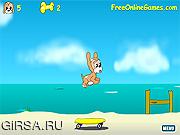 Флеш игра онлайн Maxims Seaside Adventure