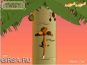 Флеш игра онлайн Monkey Nut