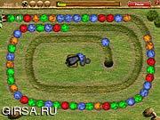 Флеш игра онлайн Зума - очень крутая!