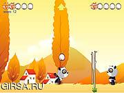 Флеш игра онлайн Панда