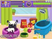 Флеш игра онлайн Pretty Dog Contest