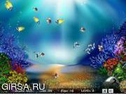 Флеш игра онлайн Queen Fish Grouping