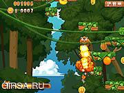 Флеш игра онлайн Прыжки енота / Racoon Jumping