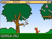Флеш игра онлайн Приключение Робби
