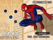Флеш игра онлайн Spiderman Costume